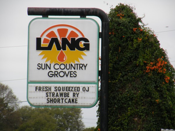 Taste of Florida cafe at Lang Sun Country Groves in Florida