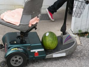 Watermelon shopping at Webster's Flea Market near Orlando